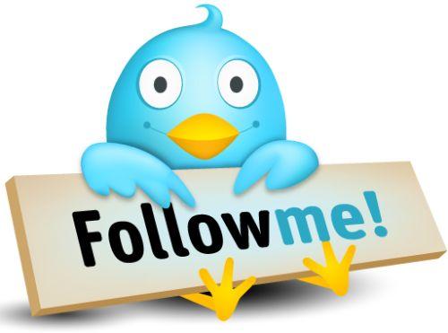 seguidores