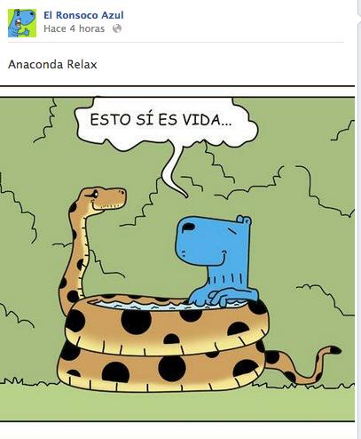 Ronsoco Azul