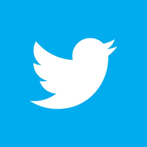 twitter-bird-white-on-blue