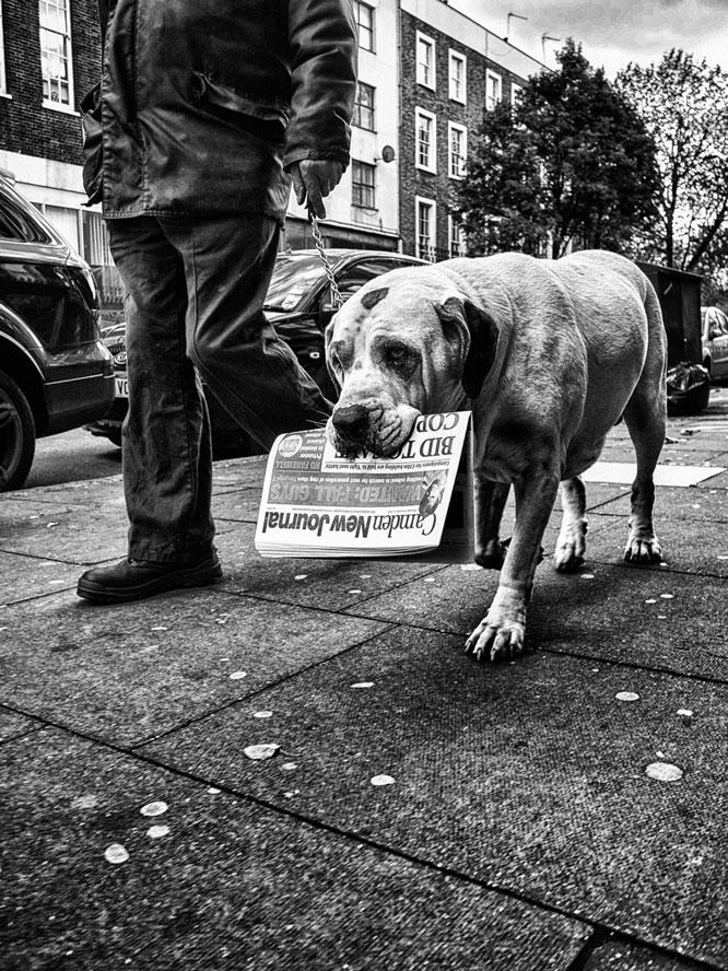 Eversholt_Street_Camden