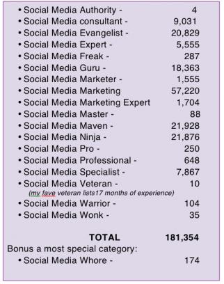 social media expertos