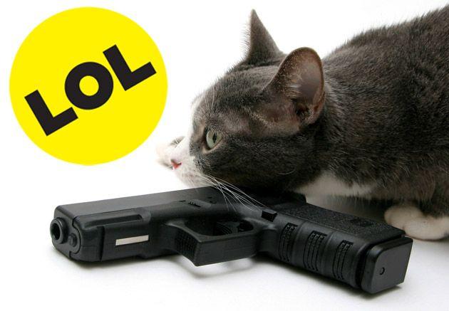 buzzfeed-cat630