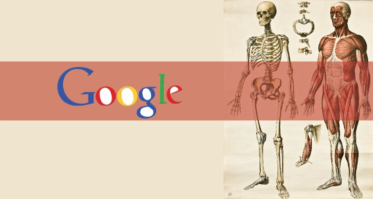 Google se enfoca en el estudio del cuerpo humano - Clases de Periodismo