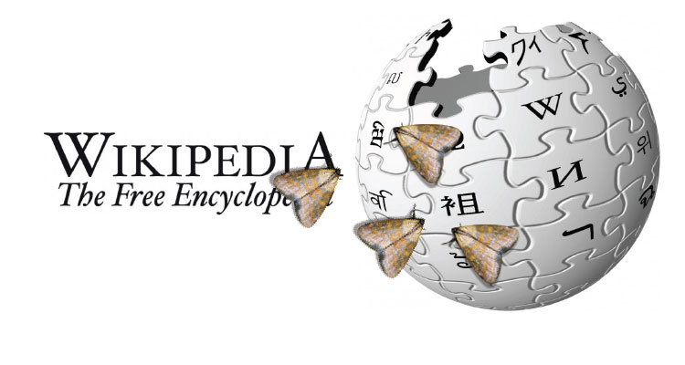 wikipedia-polillas