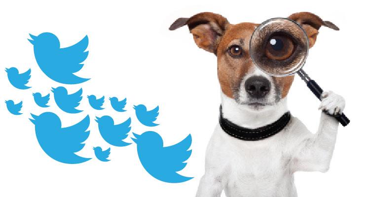 twitter-dog