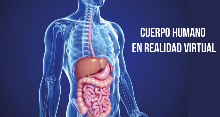 cuerpo-humano-salud