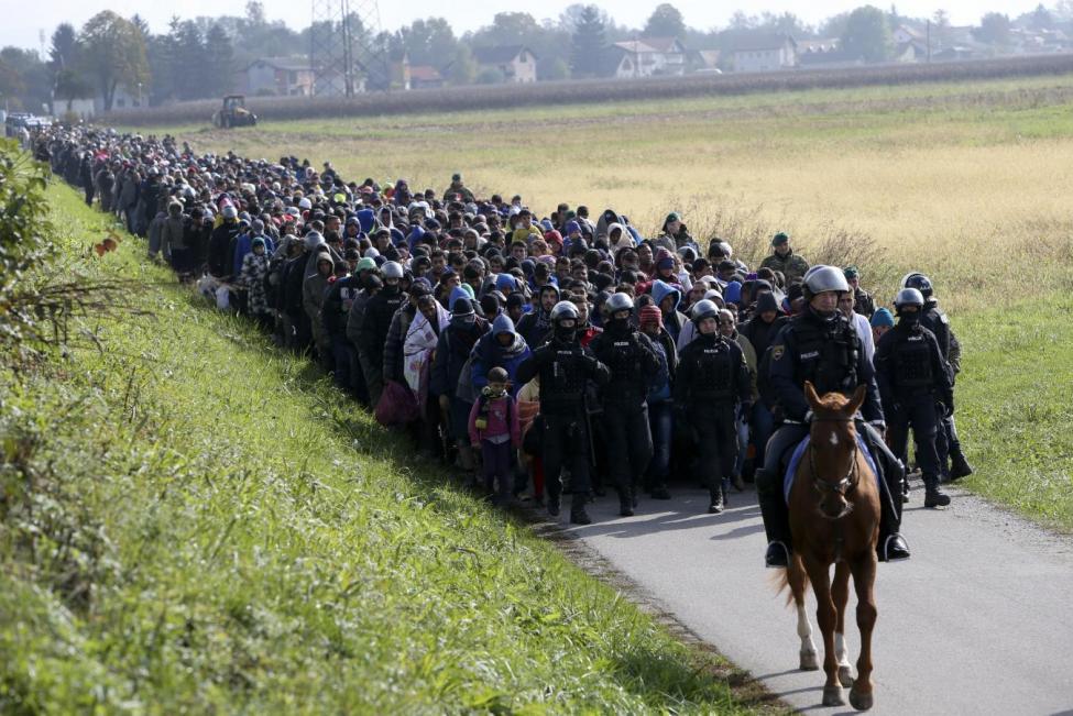 A mounted policeman leads a group of migrants near Dobova, Slovenia October 20, 2015. REUTERS/Srdjan Zivulovic
