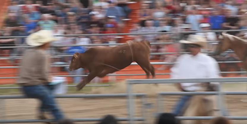 Este fotógrafo fue embestido por un toro durante rodeo en Estados Unidos
