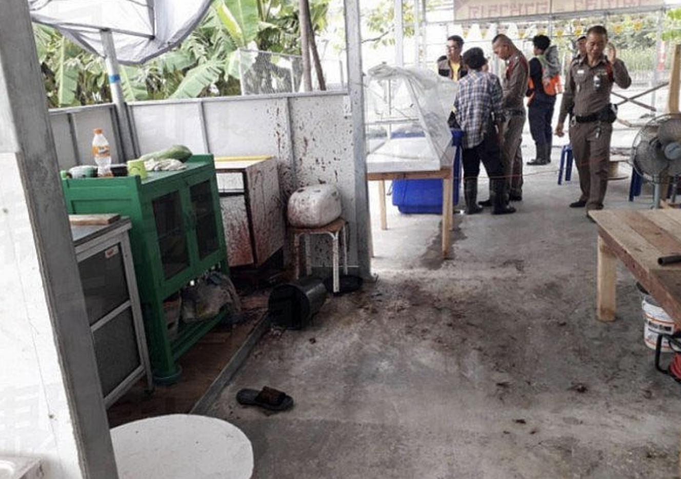 Ningún restaurante vegetariano tailandés fue clausurado por servir carne humana